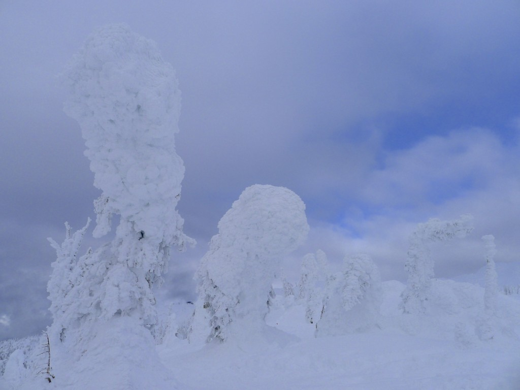 Snow ghosts, Big White