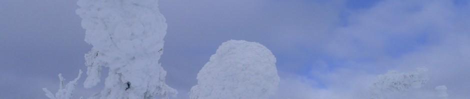 Snow ghosts, Big White